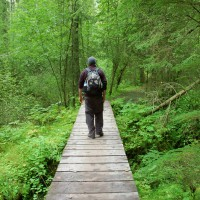 Alaska Rivers Company Easy Day Hiking Excursions